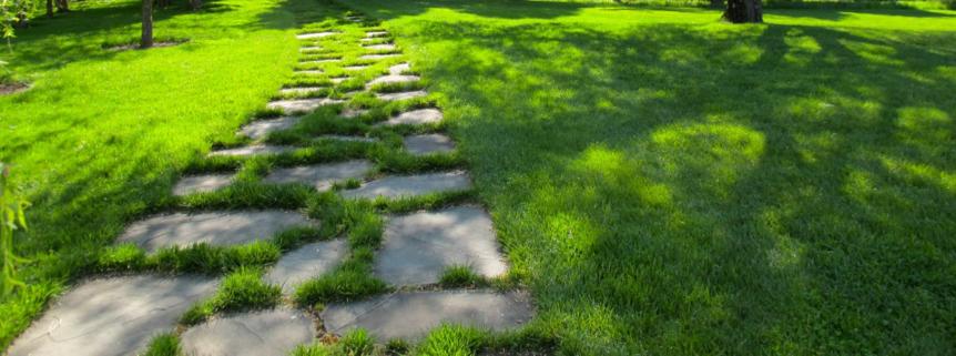 Lawn Maintenance Service In Brantford